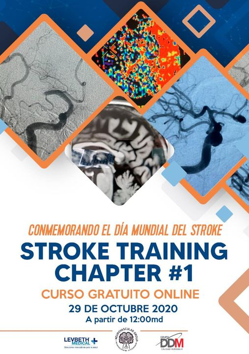 Stroke Training Chapter #1